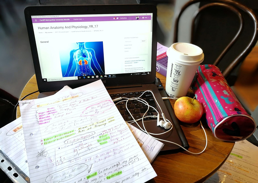 studying in a cafe